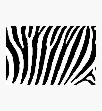 Zebra Stripes Skin Print Pattern Photographic Print