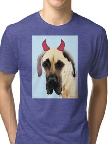 Great Dane Art - Ok Maybe I Did Tri-blend T-Shirt