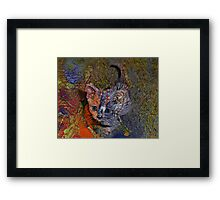 Kitten Pet Portrait Painting by Laura L. Leatherwood Framed Print