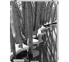 MIRRORED VOICES iPad Case/Skin