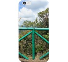 Green Wooden Fence iPhone Case/Skin