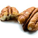 Pecan Nuts by michaelcommon