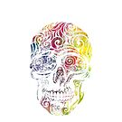 Swirly Skull (Color) by _ VectorInk