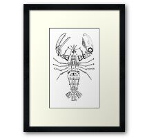 Art Lobster Framed Print
