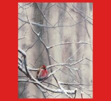 Red Bird On Snowy Branches - Winter Scene with Common Redpoll One Piece - Short Sleeve