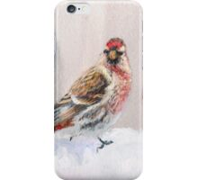 Red Birds in A Row In The Snow - Winter Red Poll Painting iPhone Case/Skin