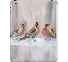 Red Birds in A Row In The Snow - Winter Red Poll Painting iPad Case/Skin