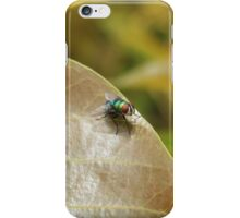 Fly on a Brown Leaf iPhone Case/Skin