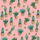cactus by franciscomff