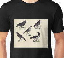 Naturgeschichte in Bildern mit erläuterndem Text E Strack 1820 Lief 2 Birds 048 Unisex T-Shirt