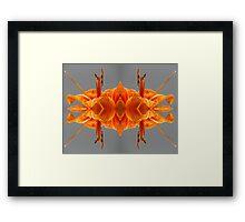 Kaleidoscopic Lily Framed Print