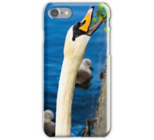 Mother Swan Foraging for and With her Babies (Cygnets) iPhone Case/Skin