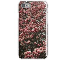 Washington Cherry Blossoms 2 iPhone Case/Skin