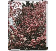 Washington Cherry Blossoms 2 iPad Case/Skin