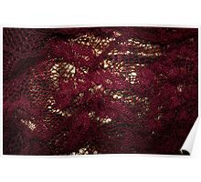 Burgundy & Gold Lace Poster