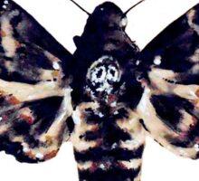 Death's Head Hawk Moth Sticker