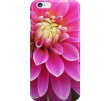 Pink Patterns iPhone Case/Skin