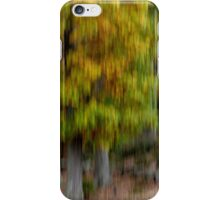 Autumn Impression iPhone Case/Skin