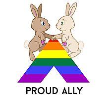 Skip & Pip (aka the Pride Bunnies) celebrate LGBT Allies Photographic Print