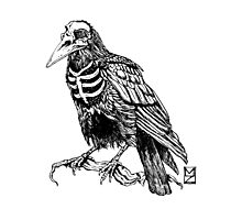Skelecrow Photographic Print