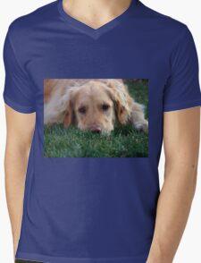 Gracie Pouts Mens V-Neck T-Shirt