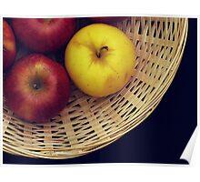 Basket Still Life Poster