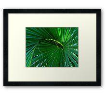Playful Palm Framed Print