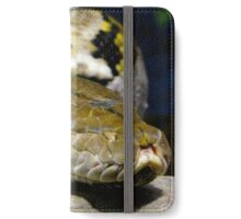 Sneaking up on you iPhone Wallet/Case/Skin