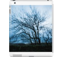 Winter Trees and Stoodley Pike iPad Case/Skin