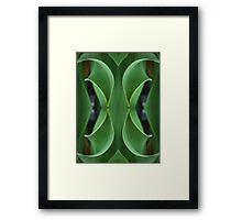 Curving Iris Leaves Framed Print