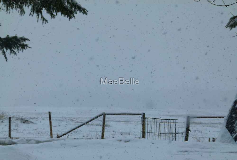 OH NO,No More Snow! by MaeBelle