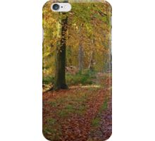 Autumn footpath in Whinfell Forest iPhone Case/Skin