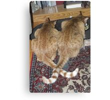 Kittens Eating with Tails Crossed Canvas Print