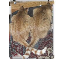 Kittens Eating with Tails Crossed iPad Case/Skin