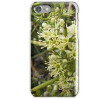 Crown of Thorns in Bloom iPhone Case/Skin