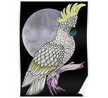 White Cockatoo Moon Poster