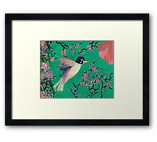 Hummingbird in the Cherry Blossoms Framed Print