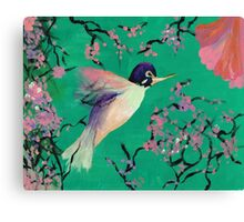 Hummingbird in the Cherry Blossoms Canvas Print
