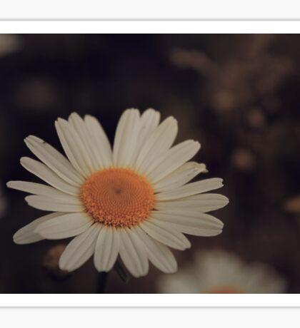 Shabby Chic Flower Sticker