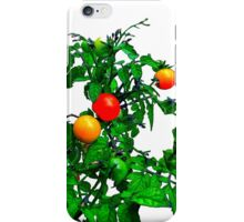Fruit Tomatoes iPhone Case/Skin