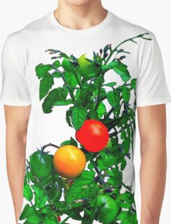 Fruit Tomatoes Graphic T-Shirt