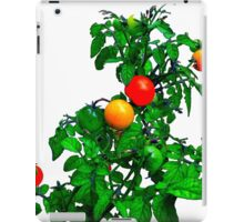 Fruit Tomatoes iPad Case/Skin