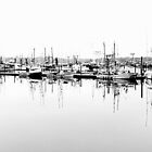 Waiting Fishing Boats...Newport, Oregon by Diane Arndt