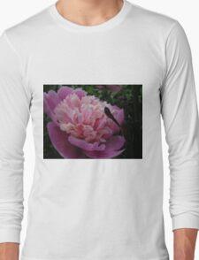 Pretty June T-Shirt