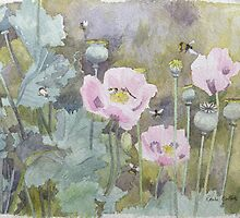 Pink poppies with bees by Bridgeman Art Library