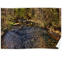 Tyler Creek Looking Upstream Poster