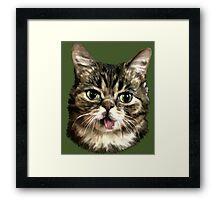 Cute Kitty Cat Art Framed Print
