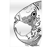 Fish Face Poster