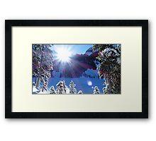Cold Winter Sunlight Framed Print
