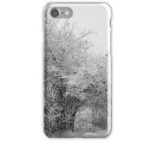 Frost Coated Trees iPhone Case/Skin
